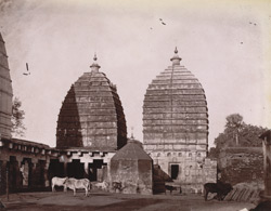 General view of minor temples, Deoghar (or Baijnath), Sonthal Parganas. 1003501